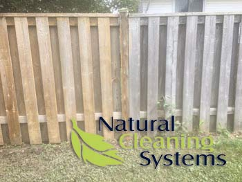 Residential Power Washing - Fence